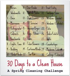 30 day cleaning plan