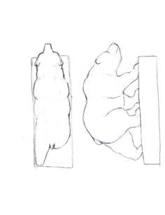 "Free Bear Carving Patterns | The original carving is 6"" long. 3 3/4 inches high. 1 3/4 inches wide."