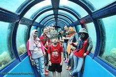 Pulau Putri Island Resort - Pulau Seribu