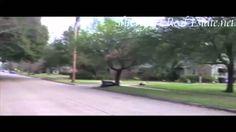 Broadmoor Subdivision Neighborhood - Shreveport Louisiana
