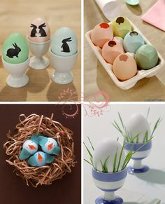 notice the blue orange and white in the natural color nest  inspiration!