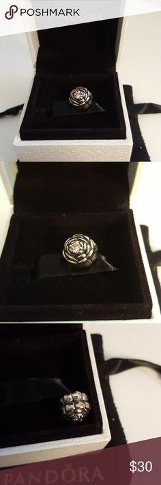 Beautiful Pandora Charm Authentic Pandora charm Pandora Jewelry Bracelets