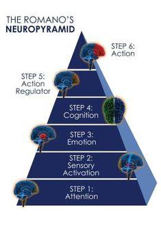 neuropirámide de Romano - Buscar con Google