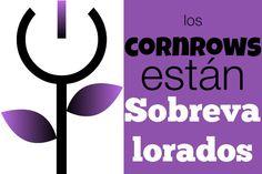 ¿Por qué creo que los cornrows están sobrevalorados  http://www.negraflor.com/2014/05/09/por-que-creo-que-los-cornrows-estan-sobrevalorados/