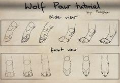 Realistic wolf paw tutorial.