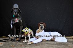 Star Wars Dog Costumes: The Canines Strike Back… Coolest Halloween Costume Contest