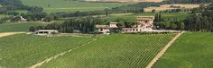 Altesino Winery in Montalcino, Italy