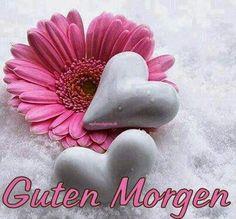 moin moin - http://guten-morgen-bilder.de/bilder/moin-moin-261/