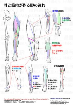 Anatomy for artists Body Reference Drawing, Human Figure Drawing, Anatomy Reference, Drawing Skills, Drawing Lessons, Art Reference Poses, Anatomy Sketches, Anatomy Drawing, Anatomy Art