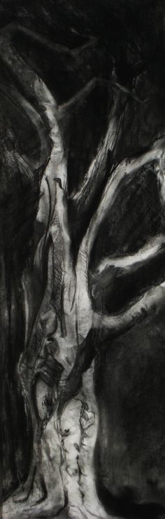 One of my favorite things to draw are trees in charcoal.