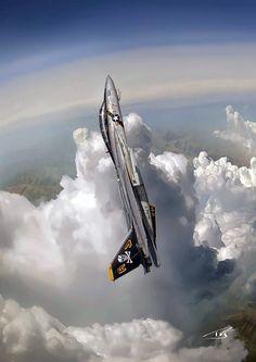 Fotka: F-14 Tomcat Artwork by Peter Van Stigt (1191 x 1694).