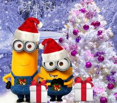 Merry Christmas all the way from Minions Land! Amor Minions, Minion S, Cute Minions, Minions Quotes, Merry Christmas Minions, Xmas, Minion Pictures, A Christmas Story, Christmas Pictures