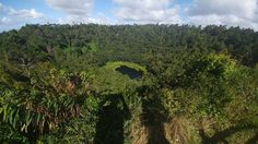 #ilovetravelling se'n va d'excursio al #volcano inactiu #trouauxcerfs ubicat a #curepipe on es pot veure el #crater i tota la seva vegetacio #greatesttravels#discoveringtheworld#picoftheday#pictureoftheday#travelawesome#travelgram#travelingram#instalike#instagood#instatravel#travel#nature#instanature#amazingartofearth#nofilter#earth#catalanspelmon#viatgersdc#igdaily#igerstravel#africa#wildlife by uri_erreala