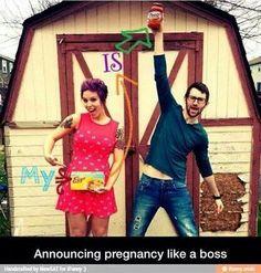 Pregnancy announcement photo. Love it.