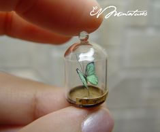 Butterfly in a bell jar... I am in love with this, my favourite colour, a butterfly, glass, and in miniature