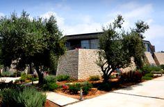 Leivatho Hotel Suites & Studios Hotel Suites, Greece, Studios, Sidewalk, Gallery, Greece Country, Roof Rack, Side Walkway, Walkway
