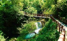 Naoussa (Arapitsa River Bridge) Macedonia, Garden Bridge, Cool Photos, Aquarium, Greece, Waterfall, Europe, The Unit, Outdoor Structures