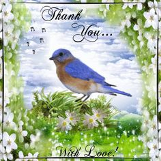 Show your appreciation this Spring, by sending this ecard to anyone with your love! : http://www.123greetings.com/events/spring/thank_you/happy_spring_thanks.html