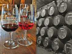Porto Food Guide Portugal, Lisbon, Red Wine, Alcoholic Drinks, City, Portuguese Food, Glass, Pictures, Porto