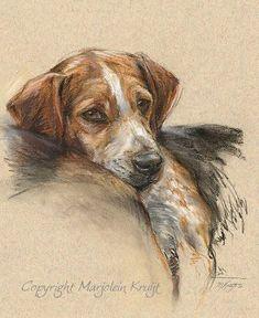 Marjolein Kruijt - #beagle in pastel - 18 maart 2010 - many animals, multiple media