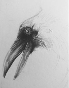 My latest piece will be slightly different from my usual artworks. It will be fully graphite, but digitally coloured. It's an idea I've been working on for a few months, so it's great to show some progress. . #wip #mixedmedia #ravenart #LisaNightshadeArt #worldofartists #beautifulbizarremagazine #artcollective #illustration #illustragram #worldofpencils #artistsoninstagram #supportartists #surrealart #artpalooza #artsanity Raven Art, Surreal Art, The Conjuring, Graphite, Surrealism, Artworks, Lisa, Drawings, Illustration