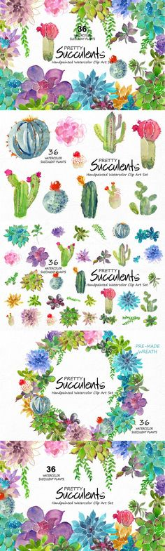Pretty Succulents- Watercolor. Wedding Fonts. $16.00