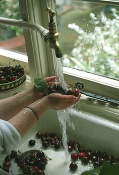 Washing the cherries