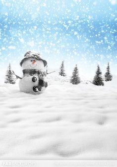 Fab Vinyl Holiday Christmas Snowman Backdrop perfect for upcoming parties, events, and photoshoots. Christmas Party Backdrop, Christmas Backdrops, Christmas Background, Christmas Wallpaper, Christmas Traditions, Christmas Themes, Christmas Holidays, Christmas Cards, Photography Backgrounds