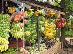 All kinds of Banana (www.secretlanka.com)