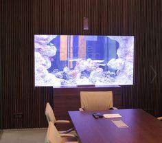 Акриловые аквариумы на заказ Flat Screen, Ocean, Tv, Blood Plasma, Flat Screen Display, Television Set, Flatscreen, The Ocean, Dish Display