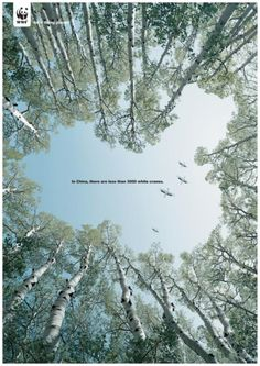 "Wild Animal Protection: ""CHINA"" Outdoor Advert  by Beijing Creative World Advertising"