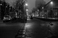 Oh Vienna . Dog in Fog . Rainy City, Andermatt, Great Love, Vienna, Street Photography, Urban, Night, Dogs, Home