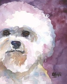 Image result for watercolor of bichpoo