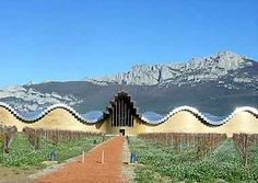 "The Bodegas and Bebidas group wanted a building that would be an icon for its prestigious new wine ""la Rioja Alavesa"" and at the same time accommodate the precise and rigorous program of spaces needed to make, store and sell wine. The site is uneven, with pronounced grade changes of as much as 10 meters from the highest levels in the north, to the lowest in the south. About half of the site is occupied by vineyards.  Photo by @arcspace.com"