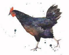 Black Hen - Kitchen Art - Country Chic - Chicken Print