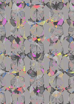 Butterflies   Flickr – 相片分享!