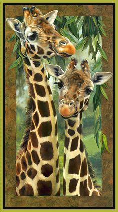 beautiful than each other canvas painting diy, chalk paint furniture, painting techniques, chalk kitchen, paint colors ideas. Check out other wonderful examples Giraffe Drawing, Giraffe Painting, Giraffe Art, Koi Painting, Animal Paintings, Animal Drawings, Art Drawings, Horse Drawings, Drawing Art
