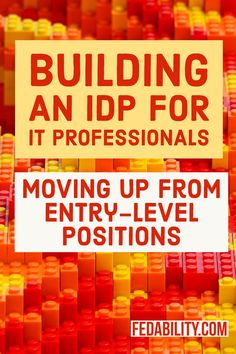 IDP for skills to move entry level IT professional to a mid-level position.
