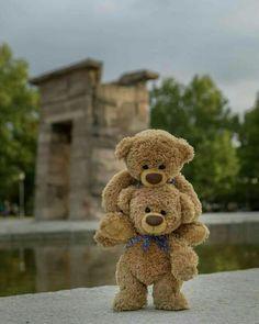 He ain't heavy, he's my brother! Great memories of your teddy bear Teddy Bear Images, Mini Teddy Bears, Teddy Bear Pictures, Ours Boyds, Teddy Hermann, Teady Bear, Bear Wallpaper, Tatty Teddy, Love Bear