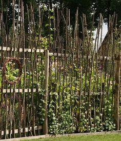Sichtschutzidee....Sight screen or natural fence for the garden corner   sichtschutz natur