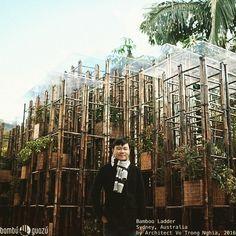 Bamboo Ladder Sydney Australia  by Architect Vo Trong Nghia 2016 #architecture #bamboo #rainforest #modern #sydney #bambu #bambuguazu