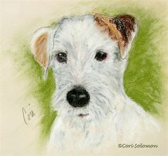 Quigley Rough Coat Jack Russell Terrier Art by Cori Solomon, painting by artist Art Helping Animals