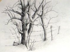 family tree pencil drawing - Buscar con Google