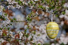 decor paste, easter decorations, Osterdeko, décorations de Pâques, Easter, Fine Dining, Catering Business, Lamb, Candles, Easter Activities