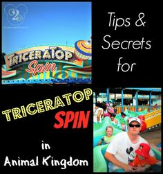 Tips and secrets for TriceraTop Spin in the Animal Kingdom. Pin now before your next Disney World trip.