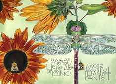 Sam Cannon, Dragonfly Art, Walt Whitman, Pencil Drawings, Colored Pencils, Hand Lettering, Rooster, Watercolor, The Originals