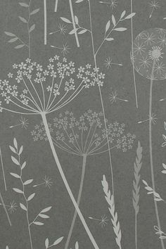 SAMPLE // Paper Meadow in 'Charcoal' by Hannah Nunn // Dark Grey Charcoal Floral Tonal Botanical Dandelion Neutral Nature Woodland Wallpaper Grey Floral Wallpaper, Dandelion Wallpaper, Charcoal Wallpaper, Dandelion Clock, Carrot Flowers, Floral Illustration, Sample Paper, Queen Annes Lace, Backdrops