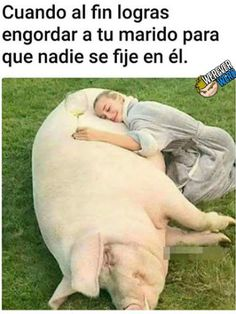 New Memes En Espanol Mujeres Humor Ideas Cool Memes, Memes Humor, New Memes, Funny Texts, Funny Jokes, Image Gag, Big Joke, Videos Fun, Funny Videos
