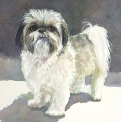 Shih Tzu Print of Watercolor Dog Painting by EdieFaganArt on Etsy. Isabella loves her pet portrait - she's the perfect Shih Tzu puppy!