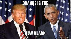Orange is...the new black